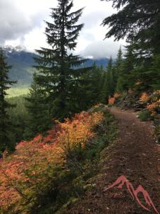 Fall hike ~ Mt. Rainier National Park