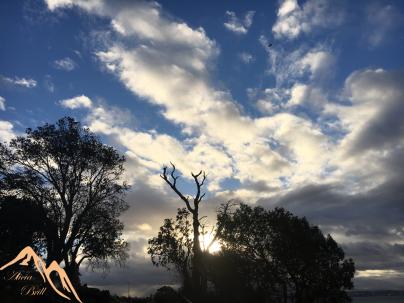 Glorious sky and bird in flight