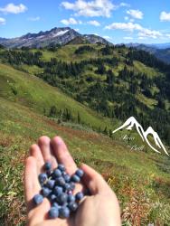 Mountain abundance